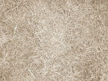 Achtergrondpatroon van dood gras Royalty-vrije Stock Foto's