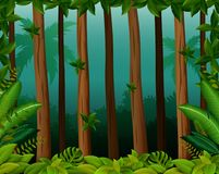 Achtergrondscène met bomen in bos royalty-vrije illustratie