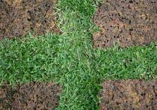 Achtergrondsteen en gras Royalty-vrije Stock Afbeeldingen