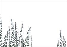 Achtergrondtak met bladeren Stock Afbeelding