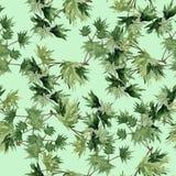 Achtergrondtakken met groene bladeren watercolor Stock Foto