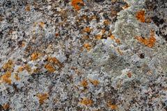 Achtergrondtexturen Het close-up van de steentextuur met kleurrijke vlekken Royalty-vrije Stock Foto's