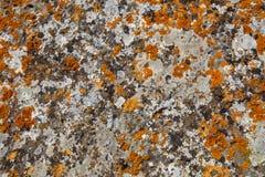 Achtergrondtexturen Het close-up van de steentextuur met kleurrijke vlekken Stock Foto