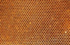 Achtergrondtextuur en patroonhoningraat van een gevulde bijenbijenkorf royalty-vrije stock foto