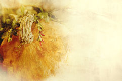 Achtergrondtextuur met een pompoen en kruiden - Stillevensamenstelling - seizoengebonden groenten van de herfst Royalty-vrije Stock Foto