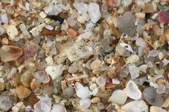 Achtergrondtextuur met kiezelsteen en overzeese shells Stock Foto's