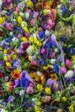 Achtergrondtextuur van boeket van kleurrijke bloemen Stock Foto's