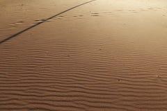 Achtergrondtextuur van golvend zand De jaarlijkse groei van gebied van zand Zandduinen met voetstappen voor het concept van de va stock fotografie