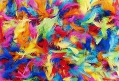 Achtergrondtextuur van heldere kleurrijke veren in regenboogkleuren stock foto's