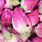 Achtergrondtextuurclose-up van droge rosebuds Stock Afbeeldingen