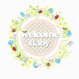 Achtergrondwildflowerskroon en banner, welkome baby Vector illustratie Stock Illustratie
