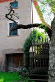 Achteringang van een huis in ArquàPetrarca Veneto Italië Stock Fotografie