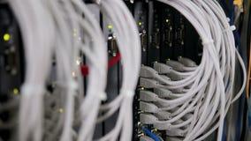 Achterkant van werkende gegevensservers met vele draden, kabels stock footage