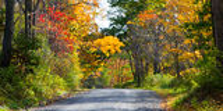 Achterlandweg in de herfst Royalty-vrije Stock Fotografie