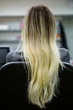 Achtermening die van mooie vrouw haar schitterend blondehaar aantonen De salon van de schoonheid hoogtepunten Stock Afbeeldingen