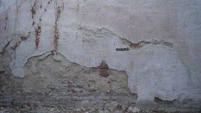 Achtermening die van vouwbare hommel voor de oude muur hangen stock video