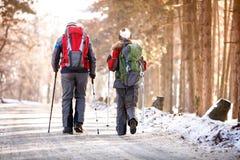 Achtermening van bergbeklimmers terwijl het lopen Stock Afbeelding