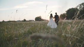 Achtermening van de gelukkige gangen van het huwelijkspaar op groen gras op zonsondergang stock video