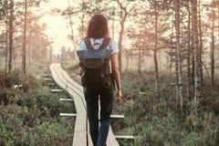 Achtermening van een toeristenmeisje met rugzakgang op een houten voetpad in mooi bos stock afbeelding
