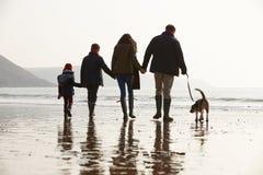 Achtermening van Familie die langs de Winterstrand lopen met Hond stock afbeelding