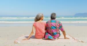 Achtermening van het actieve hogere Afrikaanse Amerikaanse paar ontspannen op deken in de zonneschijn bij strand 4k stock footage