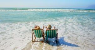 Achtermening van het actieve hogere Kaukasische paar ontspannen op een zonlanterfanter bij strand 4k stock video