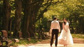 Achtermening van het jonge modieuze paar van jonggehuwden die handen houden en langs het mooie zonnige park lopen schitterend stock video