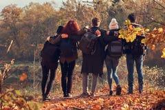Achtermening van jonge vrienden die samen en het meer in mooi de herfstbos koesteren bekijken royalty-vrije stock foto's