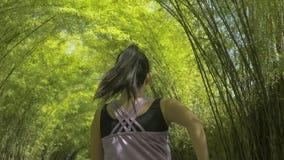 Achtermening van jonge vrouw met poneystaart lopende het praktizeren joggingtraining bij mooi stadspark in gezonde levensstijl en stock foto's