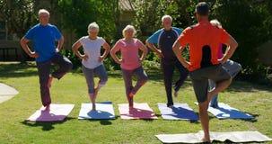 Achtermening van Kaukasische mannelijke trainer die hogere mensen in het uitvoeren van yoga bij de tuin van n 4k opleiden stock videobeelden