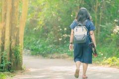 Achtermening van mensen die op de wandelingssleep in het hout lopen aan stock afbeeldingen