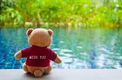 Achtermening van teddybeer die rode T-shirt met t dragen Royalty-vrije Stock Foto