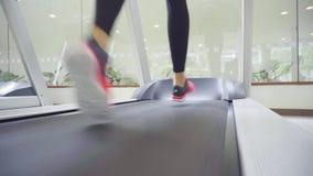 Achtermening van vrouwelijke benen die en op tredmolengymnastiek lopen lopen, vrouw opleiding stock video