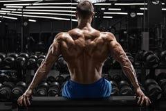 Achtermenings spiermens die achterspieren tonen bij de gymnastiek Sterk mannelijk naakt torso, training stock fotografie
