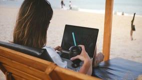 Achtermenings succesvolle gelukkige freelance arbeider met drank die aan laptop diagrammen als zitkamervoorzitter werken op tonee stock footage