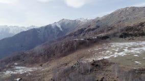 Achteruit beweegt vanaf naakt dalingshout bos en sneeuwberg in de herfst of de winter Openlucht zonnige rotsachtige aard scape stock footage