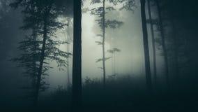 Achtervolgd bos met mist op Halloween-nacht stock fotografie