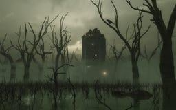 Achtervolgde Toren in het Moeras Royalty-vrije Stock Afbeeldingen
