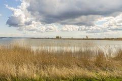 Achterwasser auf der Insel von Usedom Stockfotografie