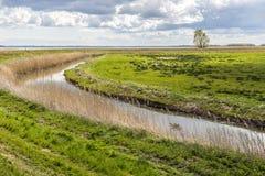Achterwasser auf der Insel von Usedom Lizenzfreies Stockfoto