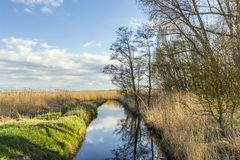 Achterwasser i Usedom på det baltiska havet Royaltyfri Fotografi