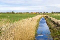 Achterwasser in Usedom in der Ostsee Stockfotografie