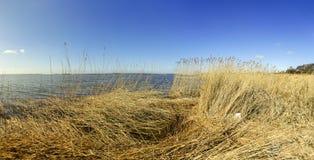 Achterwasser in Zinnowitz in Insel von Usedom in der Ostsee Stockbild