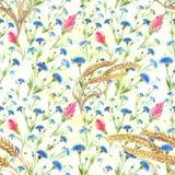 Acianos y oídos del trigo Modelo inconsútil watercolor wallpaper Utilice los materiales impresos, muestras, carteles, postales, p Fotografía de archivo