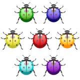 Acid-colored ladybirds set Stock Photo