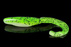 Acid green fishing bait isolated on black Royalty Free Stock Photo