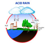 Acid rain. Is caused by emissions of sulfur dioxide and nitrogen oxide, which react with the water molecules in the atmosphere to produce acids vector illustration