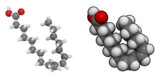 Acide linoléique (LA) Image libre de droits