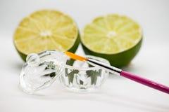 Acidi della frutta di AHA Pelatura dell'acido della frutta per il fronte, spazzola cosmetica, agrumi Sbucciatura facciale con gli immagine stock
