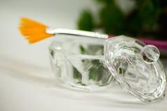 Acidi della frutta di AHA Pelatura dell'acido della frutta per il fronte, spazzola cosmetica, agrumi Sbucciatura facciale con gli fotografia stock